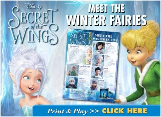 Secret of the Wings: Fun Winter Family Activities!