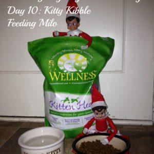 25 Days of Elf on the Shelf – Day 10 #elfontheshelf