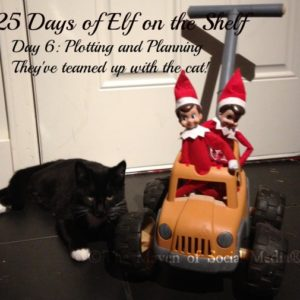 25 Days of Elf on the Shelf – Day 6 #elfontheshelf