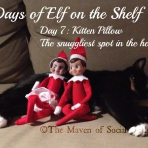 25 Days of Elf on the Shelf – Day 7 #elfontheshelf