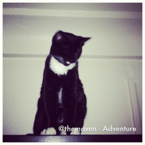 Adventure - January Photo a Day #7sddphotoaday
