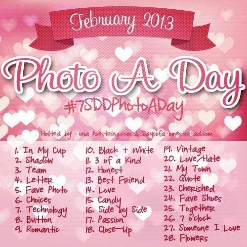Join me for February Photo a Day? #7SDDPhotoADay