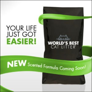 There is a new cat litter in town…. #WorldsBestMysteryLitter