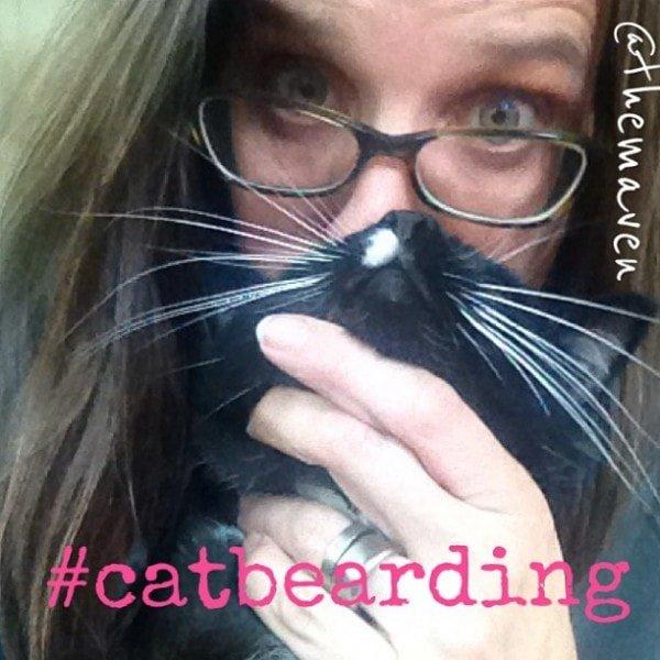 cat bearding #shop