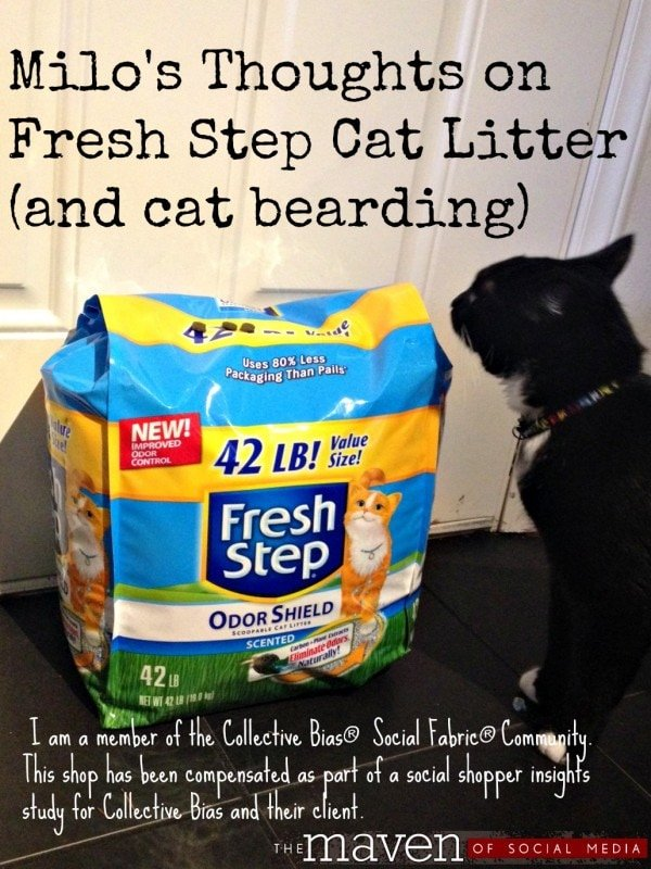 Milo's thoughts on Fresh Step Cat Litter and Cat Bearding