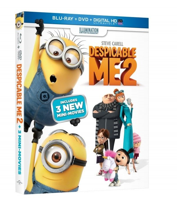 Despicable Me 2, family entertainment