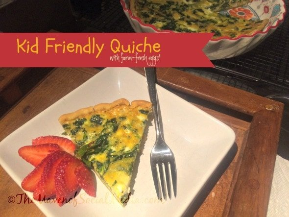Kid Friendly Quiche - The Maven of Social Media®