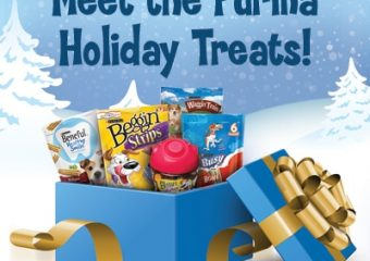 Swipe Snowflakes, win Purina Snacks or even a $50 Gift Card!
