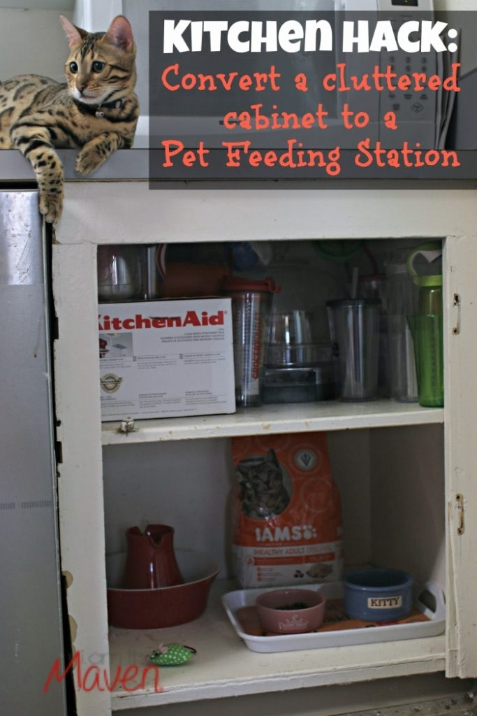 Convert that cluttered cabinet in your kitchen to a pet feeding station #1StopPetShop #ad