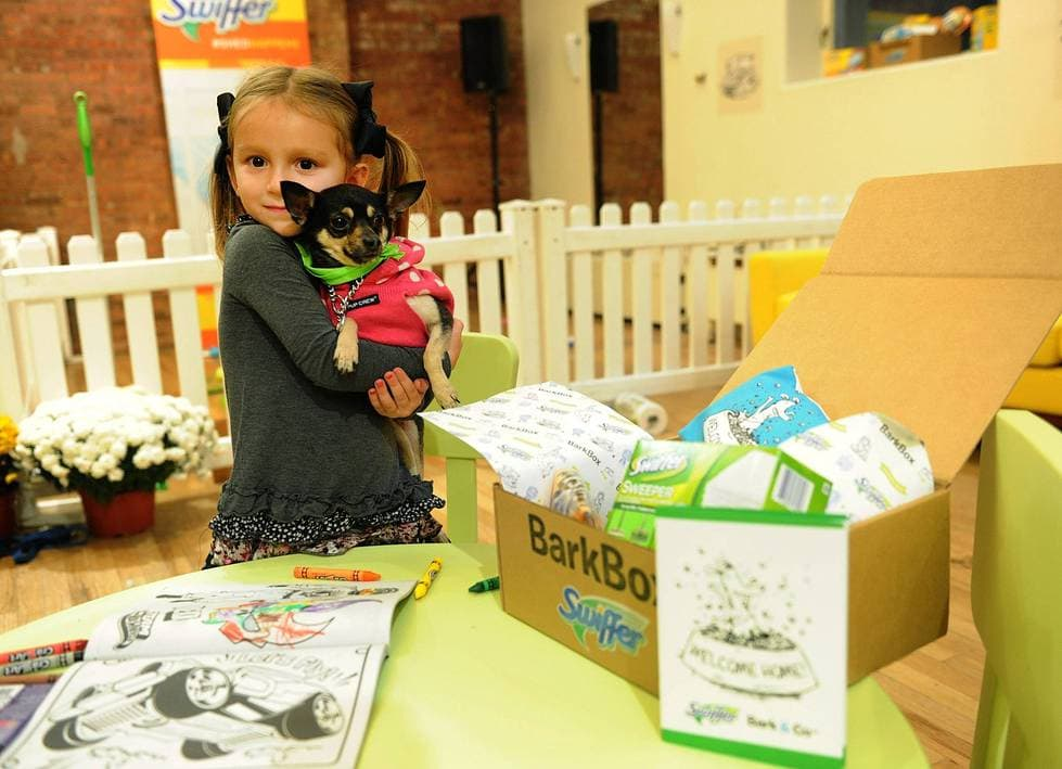 "A new dog owner and her BarkBox at Swiffer's ""Welcome Home"" child's first pet event."