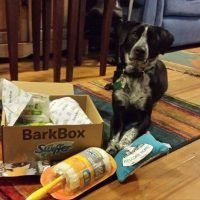 kyra-barkbox