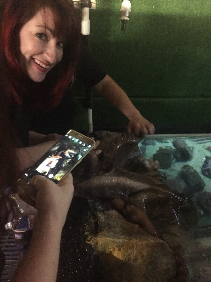 "The lovely Carol Jones of ""All Mommy Wants"" has some hands on Octopus experience."