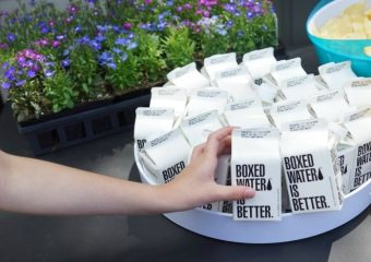 Paper Carton Planter Craft with Boxed Water