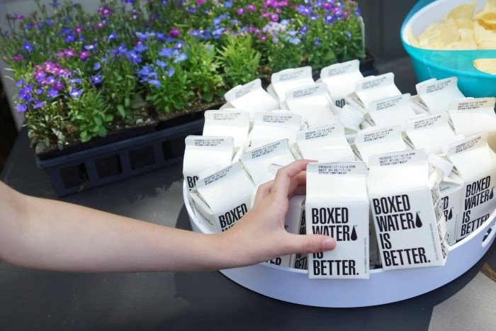 Use Boxed Water Cartons for an Easy Paper Carton Planter Craft