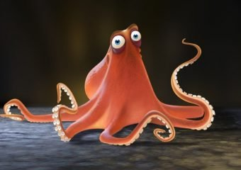 All About Hank the Octopus