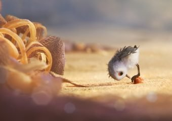 Pixar's New Short: Piper