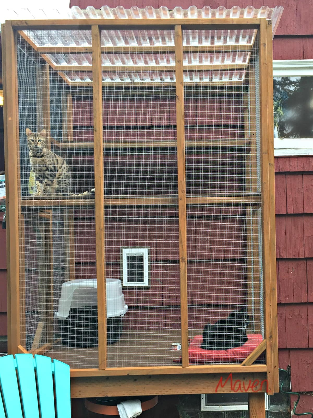 Custom built catio in Seattle