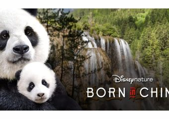 Disney's Born in China is available to own TODAY, August 29th