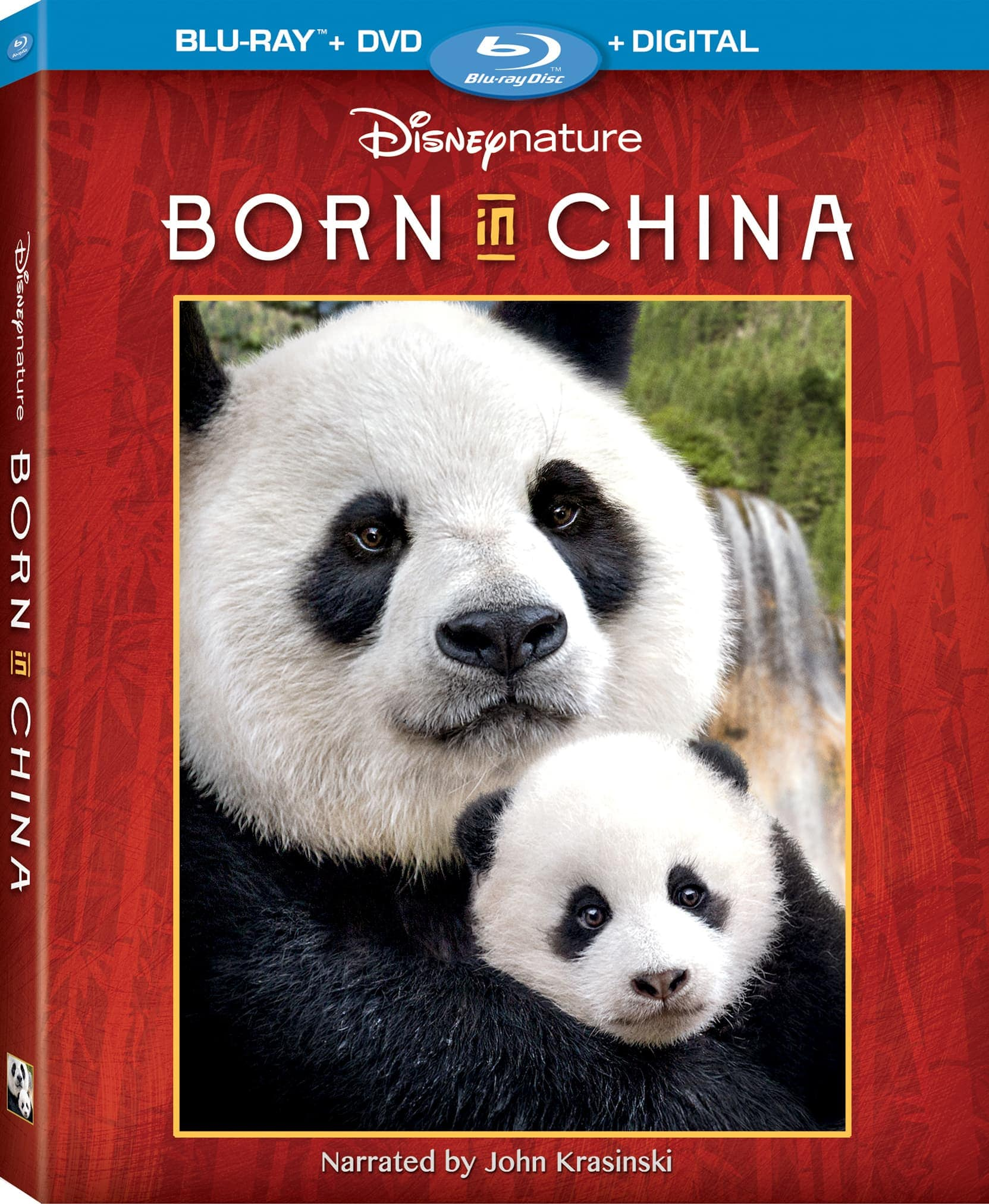 "Disney's Born In China, narrated by John Krasinski, transports audiences to some of the world's most extreme environments of China where few people have ever ventured to witness wildly intimate and adorable moments in the lives of three animal families - a doting panda bear mother, a 2-year-old golden snub-nosed monkey, and a mother snow leopard. It is the seventh theatrical release from Disneynature, which brings the world's top nature filmmakers together to share wildlife stories that engage, inspire and educate. The breathtaking footage and high-definition quality picture is captivating for audiences of all ages and is a must-add to the in-home collection. Disneynature's newest true-life adventure film ""Born in China"" journeys into homes on Digital and Blu-ray™ Combo Pack TODAY, Aug. 29."