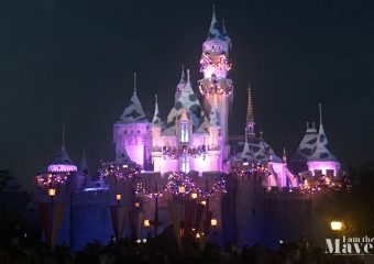 sleeping beauty castle christmas