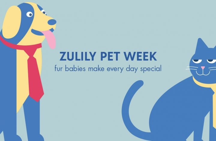 zulily Celebrates Love Your Pet day