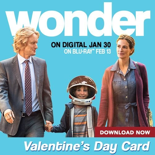 wonder activities valentine's day card