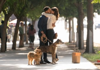dog days the film