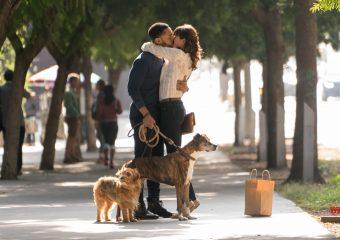 Dog Days The Film Giveaway! $50 Fandango Gift Card!