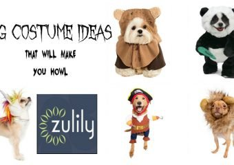 5 dog costume ideas