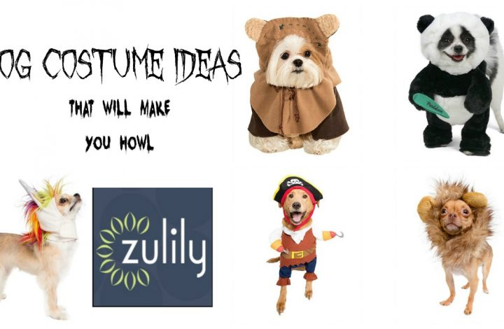 Celebrate National Dog Week with Dog Costume Ideas from zulily!