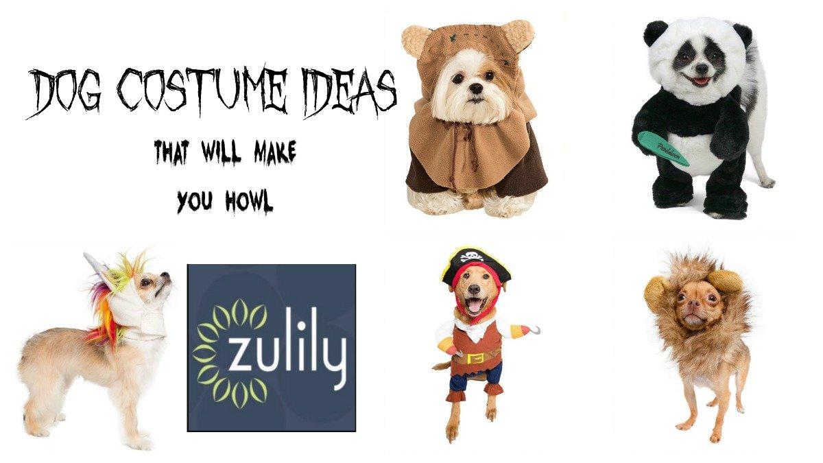 5 dog costume ideas