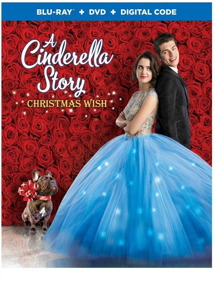 Cover of bluray for A Cinderella Story