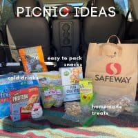 various picnic foods on a blanket in the back of a mini van